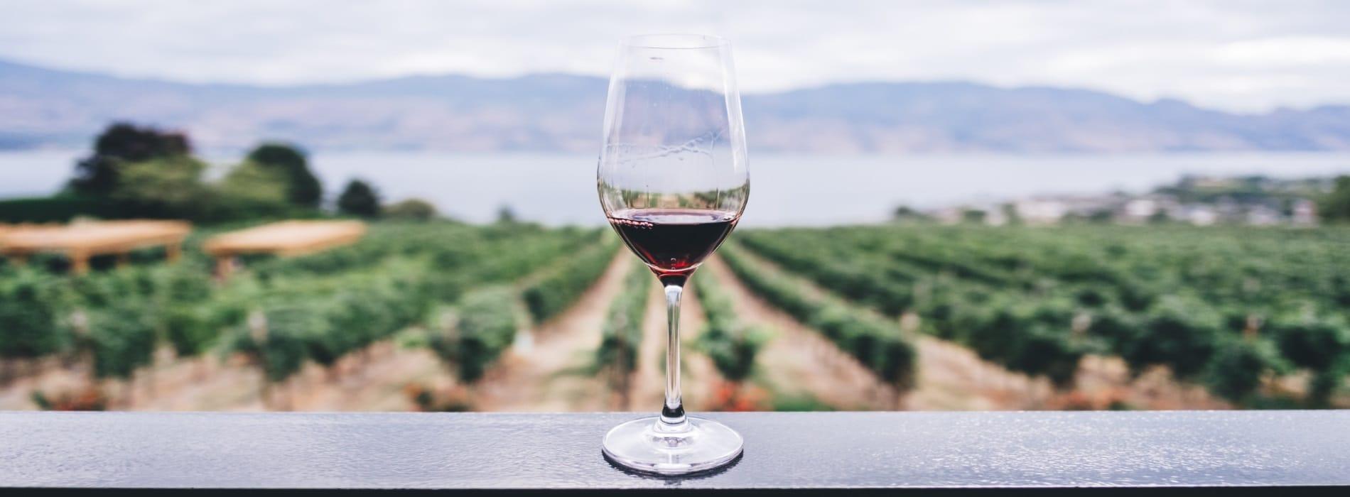 イタリアのワインを通販で買おう